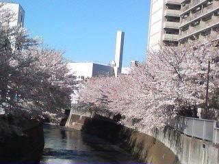 アパートの前には神田川